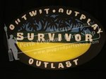29-Survivor Shield