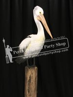 18-Pelican on Post