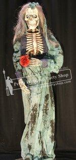 26-Skeleton