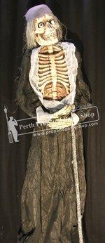 27-Skeleton