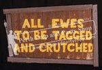 "9-""ALL EWES TO BE TAGGED AND CRUTCHED"" sign"