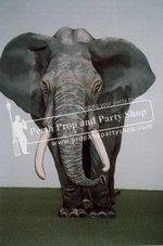 1-Elephant