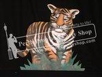 2-Tiger Cub