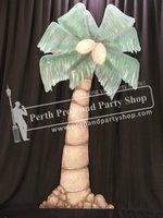 8-Palm Tree